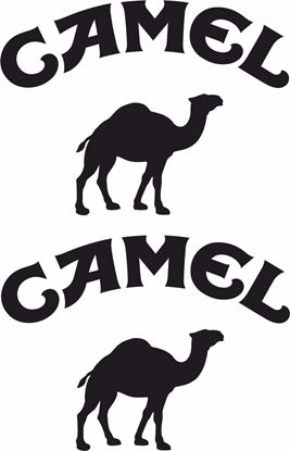 "Picture of ""Camel"" Track and street race sponsor logo"