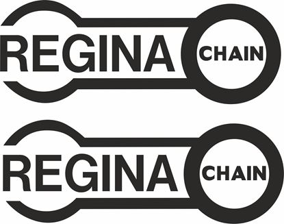 "Picture of ""Regina Chain"" Track and street race sponsor logo"