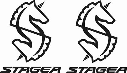 Picture of Nissan Stagea Decals / Stickers
