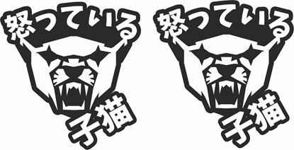 Picture of Angry Kitteh Cat Japanese JDM Decals / Stickers