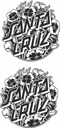 "Picture of ""Santa Cruz""  general panel  Decal /Sticker"