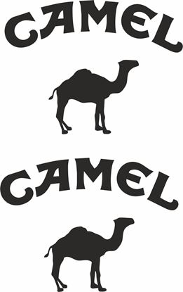 Picture of Camel Glass / Panel  Decals / Stickers