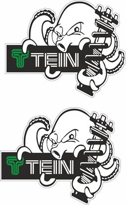 "Picture of ""Tein"" Decals / Stickers"