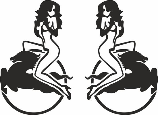 Picture of Iveco Woman Panel Decals / Stickers