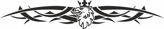 Picture of Scania windscreen / Panel  Decal / Sticker
