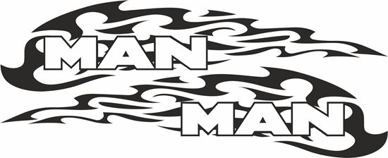 Picture of MAN  Panel  Decals / Stickers
