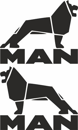 Picture of MAN  Glass / Panel  Decals / Stickers