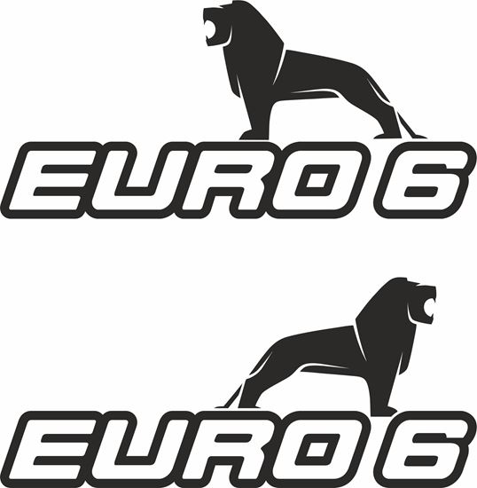 """Picture of MAN """"Euro 6""""  Glass / Panel  Decals / Stickers"""
