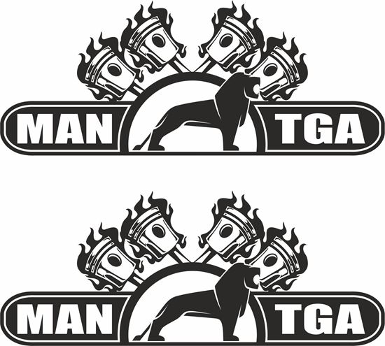 Picture of MAN TGA Panel Decals / Stickers
