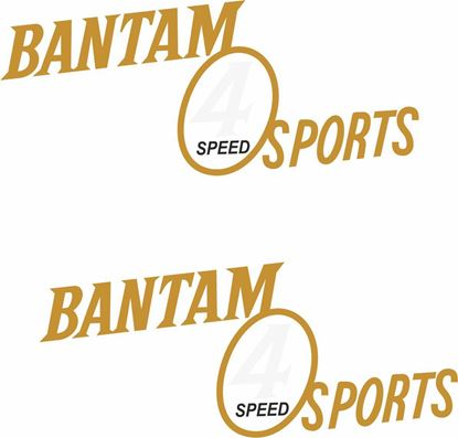 Picture of BSA Bantam Sports 4 Speed Decals / Stickers