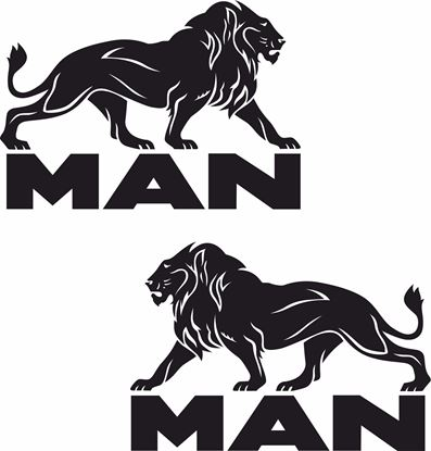 Picture of MAN Lion Decals / Stickers