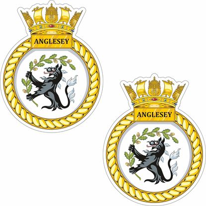 Picture of HMS Anglesey (P277) Stickers