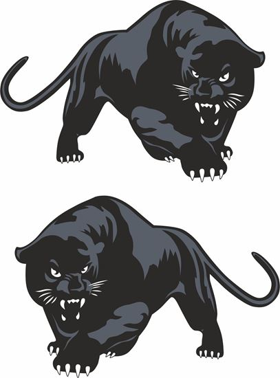 Picture of Scomadi Panther Decals / Stickers
