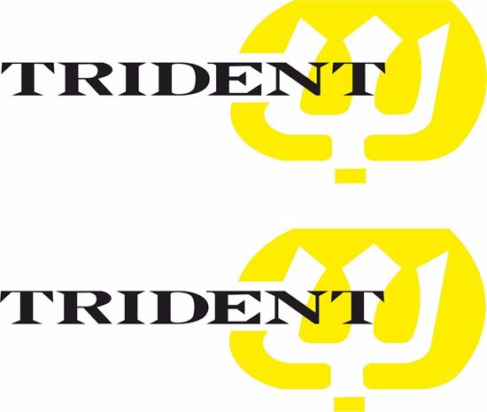 Picture of Triumph Trident Decals / Stickers