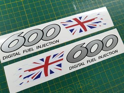 Picture of Triumph TT 600 2000 -2003 replacement tail  Decals / Stickers