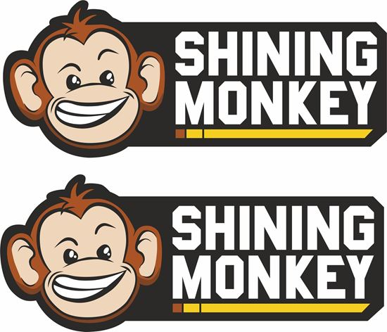 "Picture of ""Shining Monkey"" Decals / Stickers"