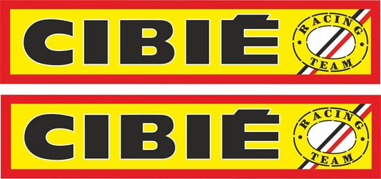 Picture of Cibie Racing Team general panel Decals / Stickers