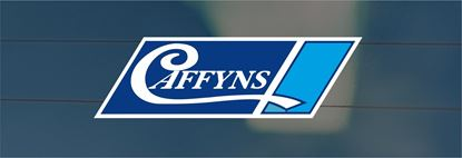 Picture of Caffyns - Sussex Dealer rear glass Sticker