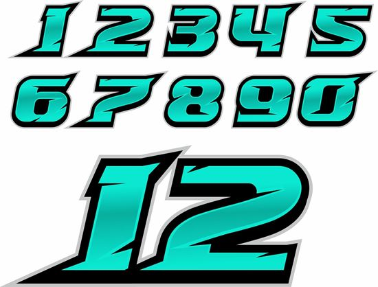 Picture of Track Day Door Number Decals  / Stickers