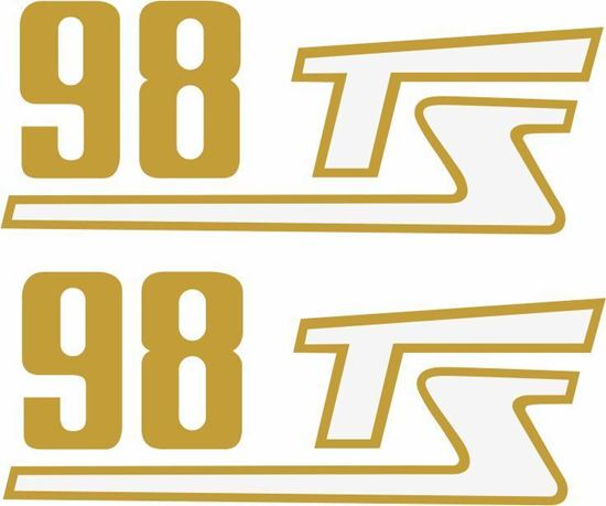 Picture of Ducati 98 TS Decals / Stickers