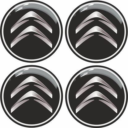 Picture of Citroen Gel Badges