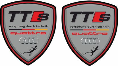 Picture of Audi TTS Quattro Wing / Panel Decals / Stickers