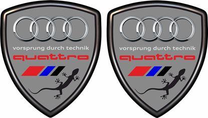 Picture of Audi Quattro Wing / Panel Decals / Stickers