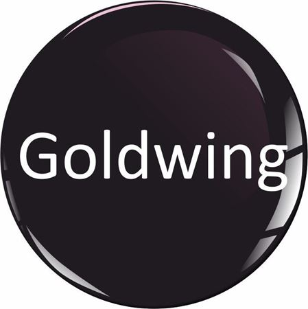 Picture for category Goldwing