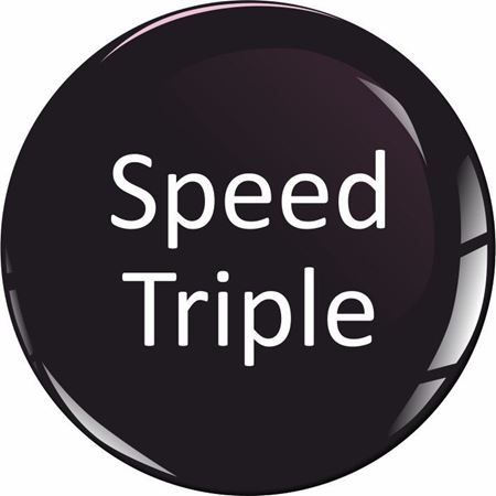 Picture for category Triumph Speed Triple
