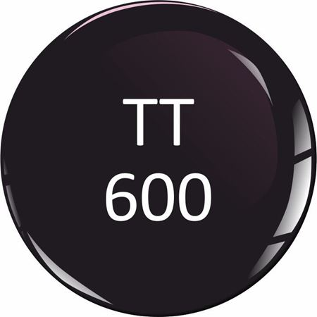 Picture for category Triumph TT 600