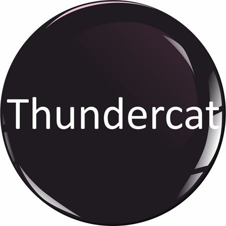 Picture for category YZF Thundercat 600R