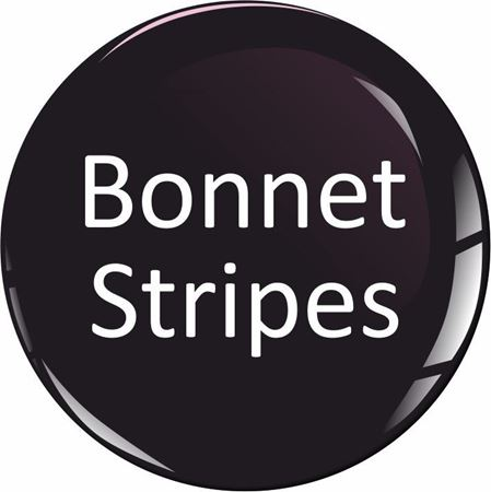 Picture for category Bonnet Stripes and Graphics