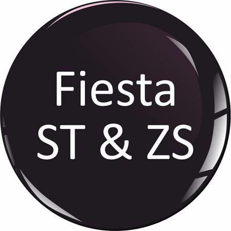 Picture for category Fiesta ST and ZS