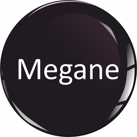 Picture for category Renault Megane