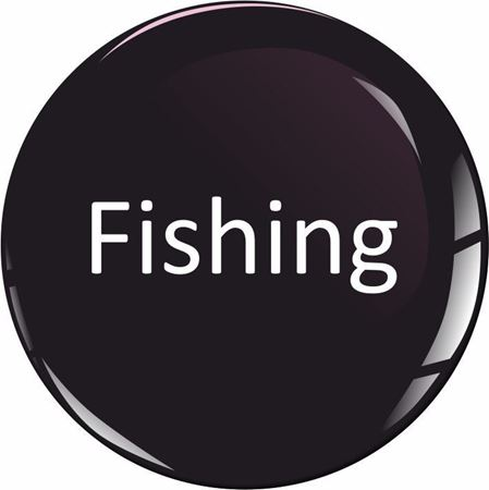 Picture for category Fishing stickers