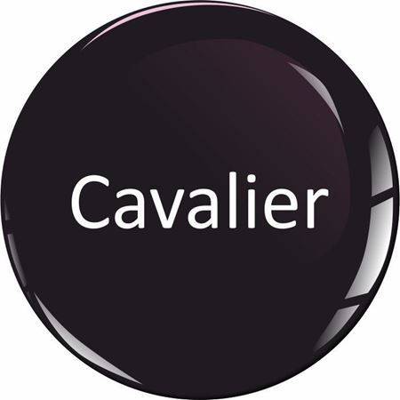 Picture for category Vauxhall Cavalier