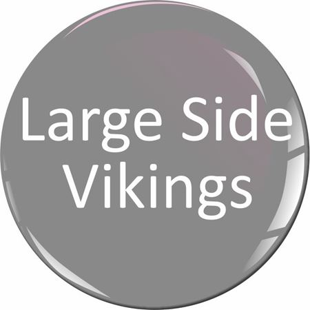 Picture for category Scania large side Viking Stickers