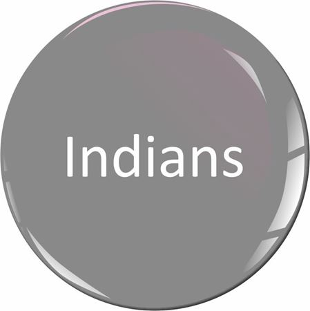 Picture for category Indians