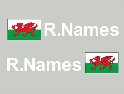 Picture of Wales Glass / Panel Driver Name Decals / Stickers