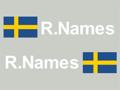 Picture of Sweden Glass / Panel Driver Name Decals / Stickers