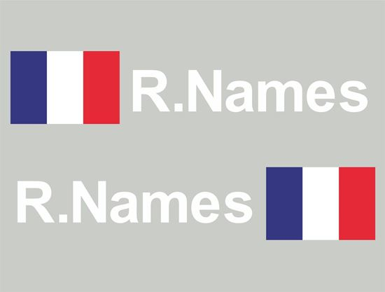 Picture of France Glass / Panel Driver Name Decals / Stickers