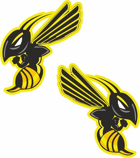 Picture of Honda Hornet Decals / Stickers