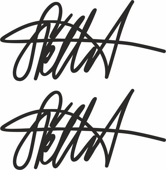 Picture of Sebastian Vettel  Signature General Panel  Decals / Stickers