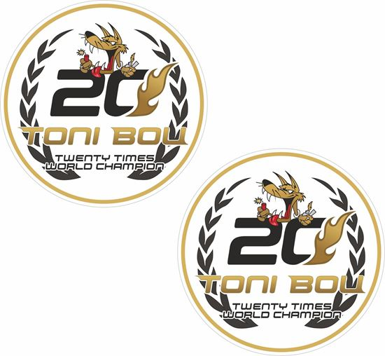 Picture of Toni Bou Decals / Stickers