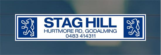 Picture of Stag Hill - Surrey Dealer rear glass Sticker