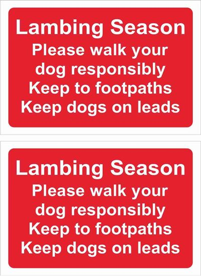 Picture of Lambing season please walk your dog...  Decals / Stickers