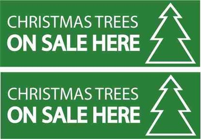 Picture of Christmas trees on sale here Decals / Stickers