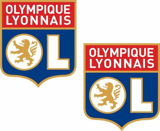 Picture of Olympique Lyonnais Decals / Stickers