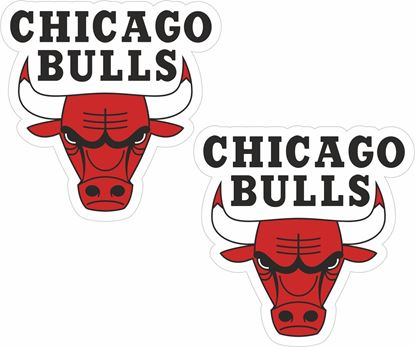 Picture of Chicago Bulls Decals / Stickers
