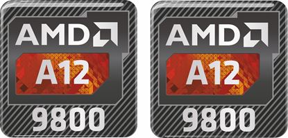Picture of AMD AA12 9800 Gel Badges